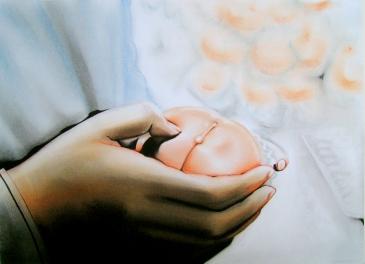 Peach (2010) Lápiz y pastel sobre papel. Medidas 24 x 32 cm.